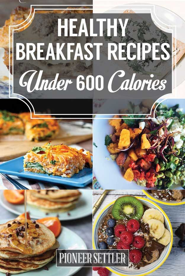 Healthy breakfast recipes under 600 calories delicious meals healthy breakfast recipes under 600 calories forumfinder Image collections