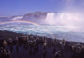 Image detail for -Niagara Falls with gull flying over