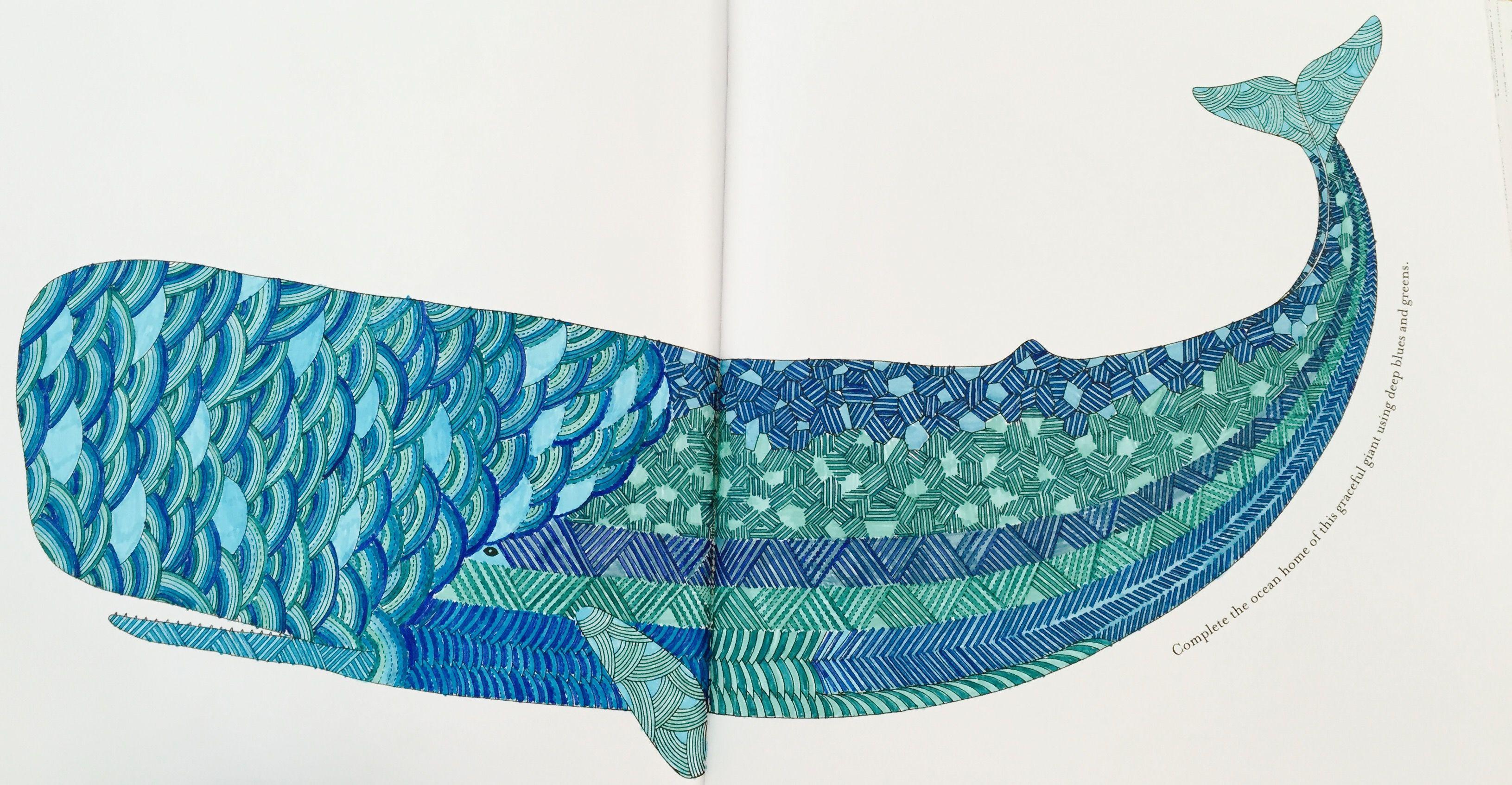 Millie Marotta Animal Kingdom Whale Using Connector Pens