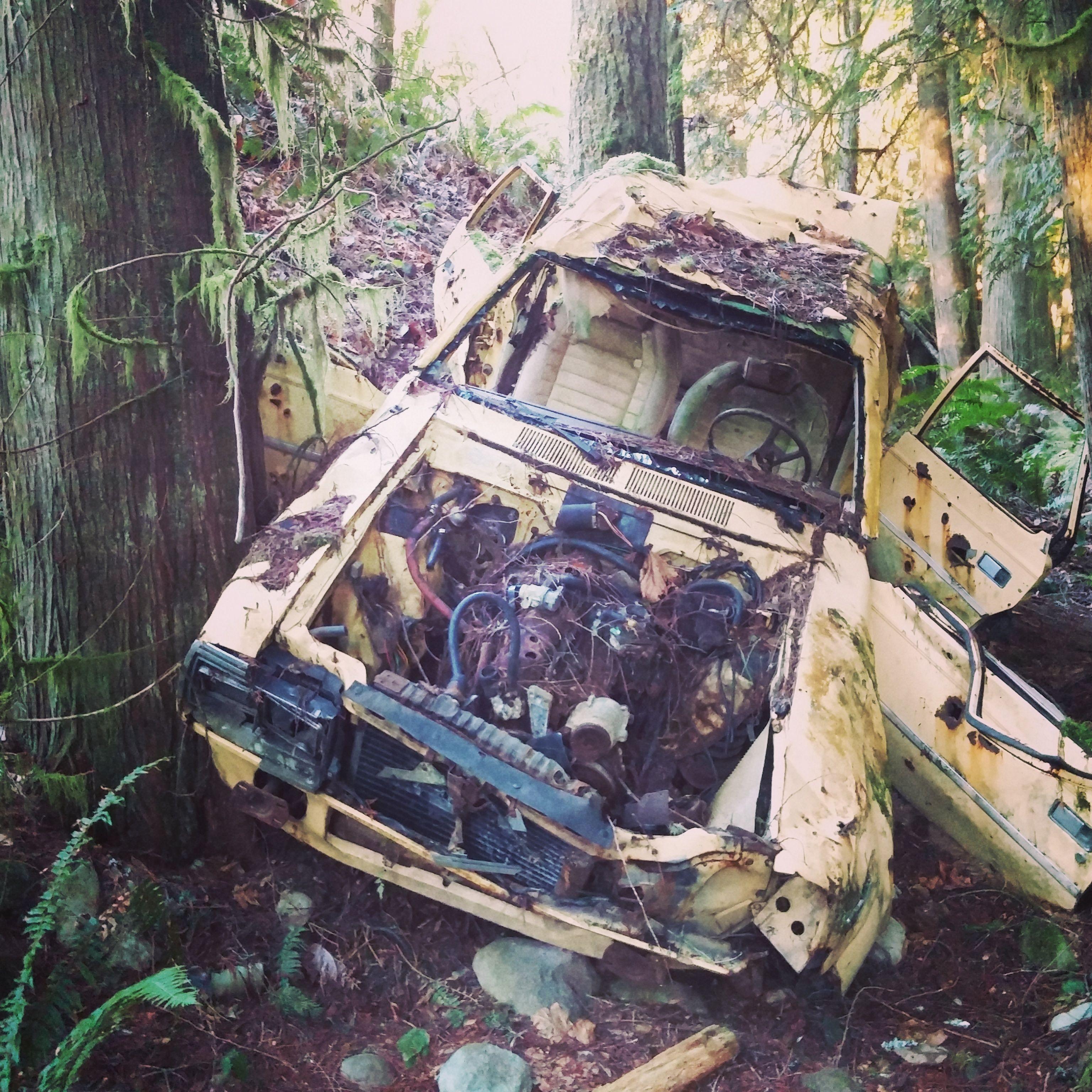 Abandoned Car In Woods Near Seattle Wa Oc 3072x3072 Abandoned Car Abandoned Car