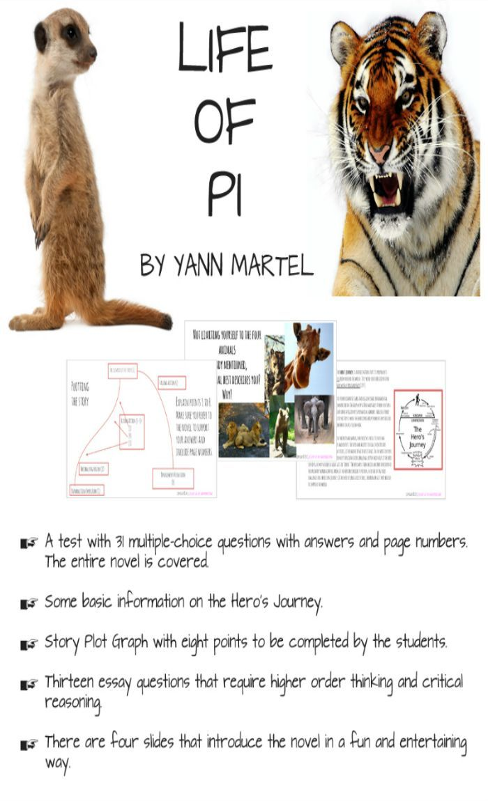 003 LIFE OF PI grades 8+ entire novel covered Life of