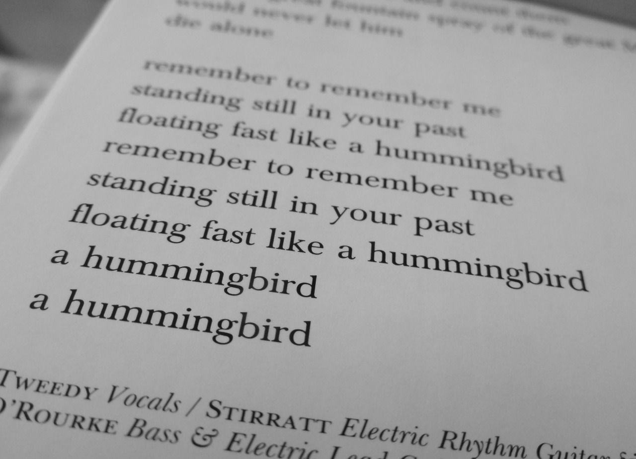 wilco lyrics hummingbird Favorite lyrics, Lyrics, Music