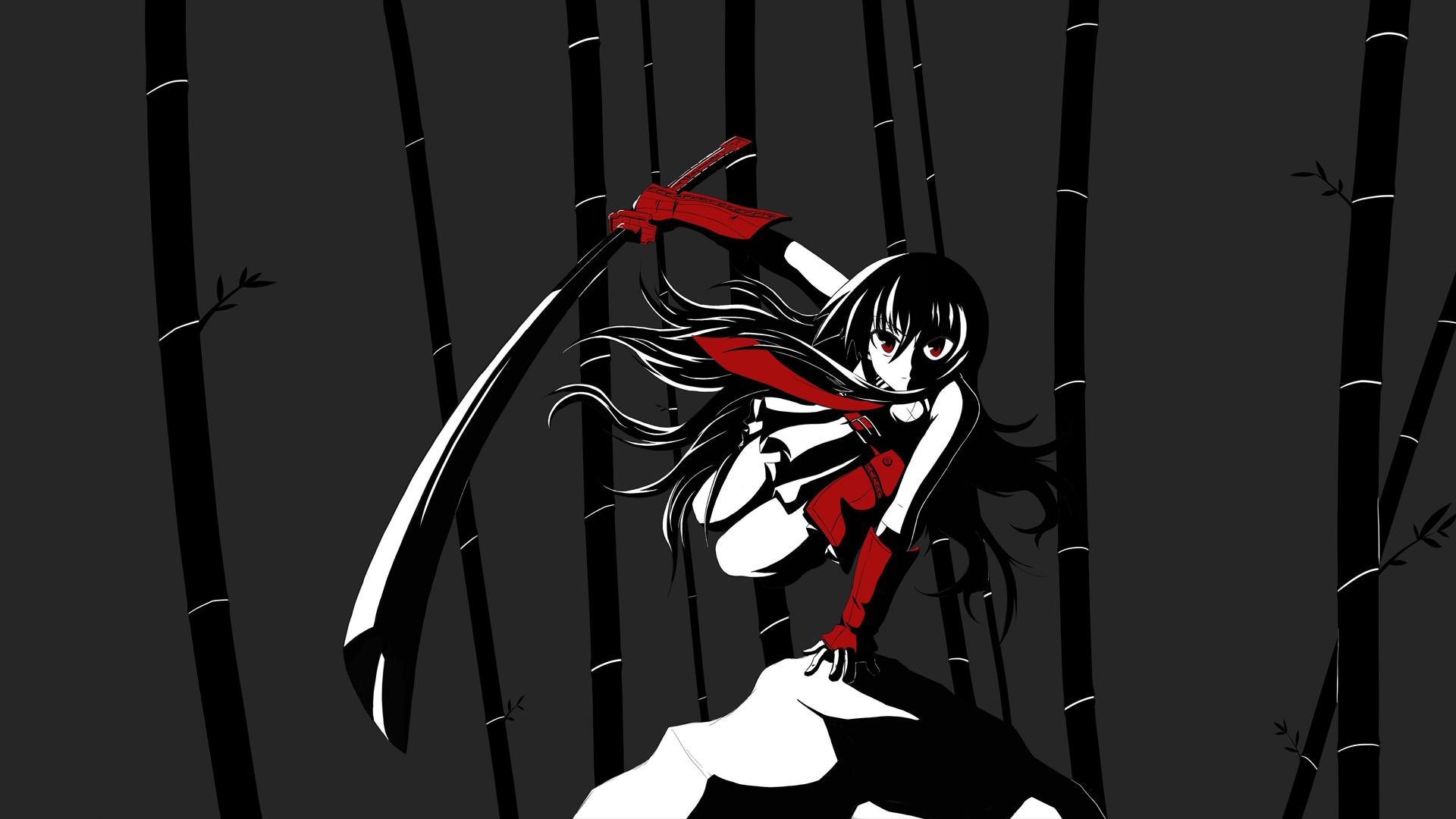Akame Ga Kill Computer Wallpapers Desktop Backgrounds 1920x1080 Id 554298 Akame Ga Akame Ga Kill Anime Wallpaper