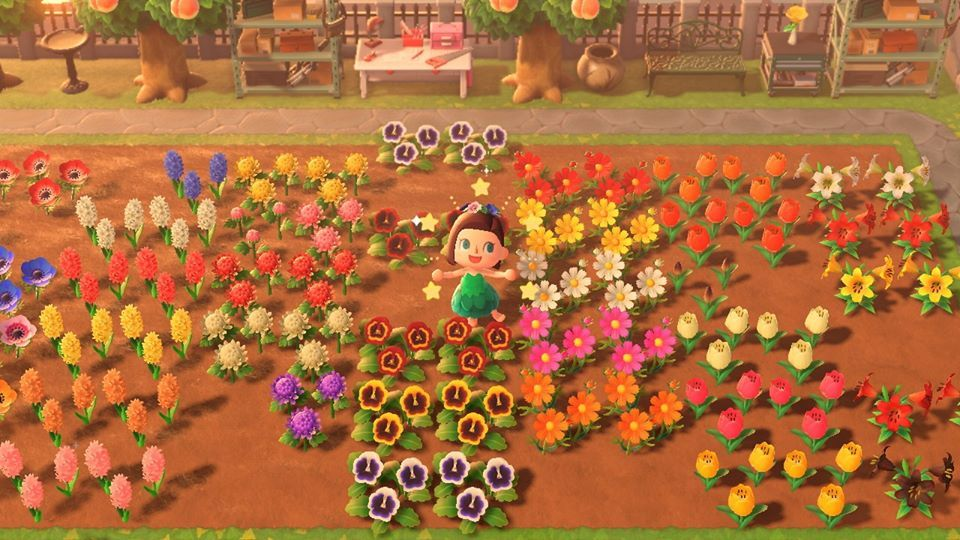 How To Create Hybrid Flowers In Animal Crossing New Horizons Grow Animals Animal Crossing Flower Chart