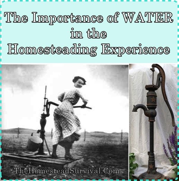 The Importance of WATER in the Homesteading Experience Homesteading  - The Homestead Survival .Com