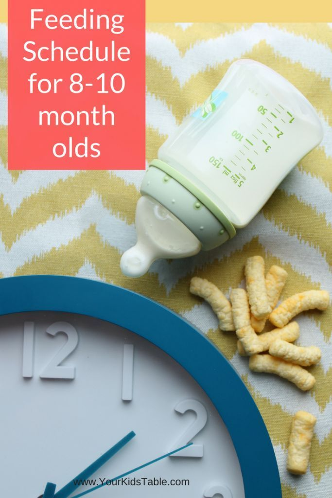 Feeding Schedule for 8, 9, and 10 Month Olds   10 month ...
