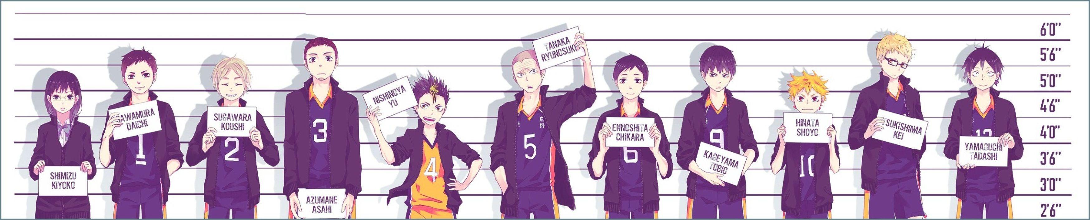 Haikyuu Karasuno Volleyball Team Haikyuu Haikyuu Season 2 Karasuno