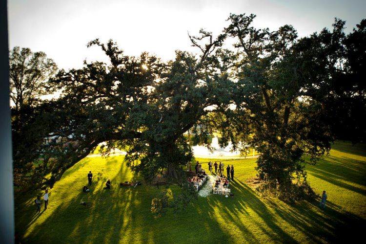 A look above a gorgeous outdoor wedding at Nottoway Plantation.