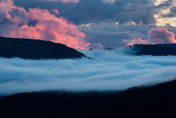 a sea of clouds at sunset