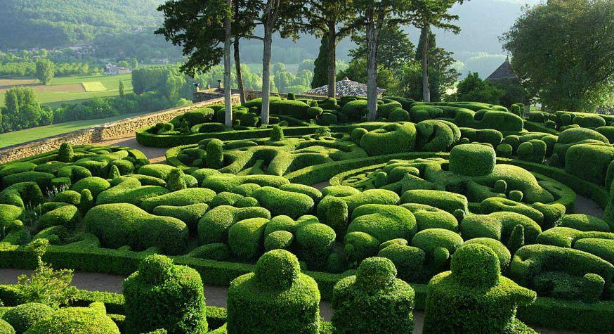 mass topiary