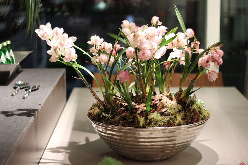 Arranjos Com Flores Tropicais Com Imagens Flores Tropicais