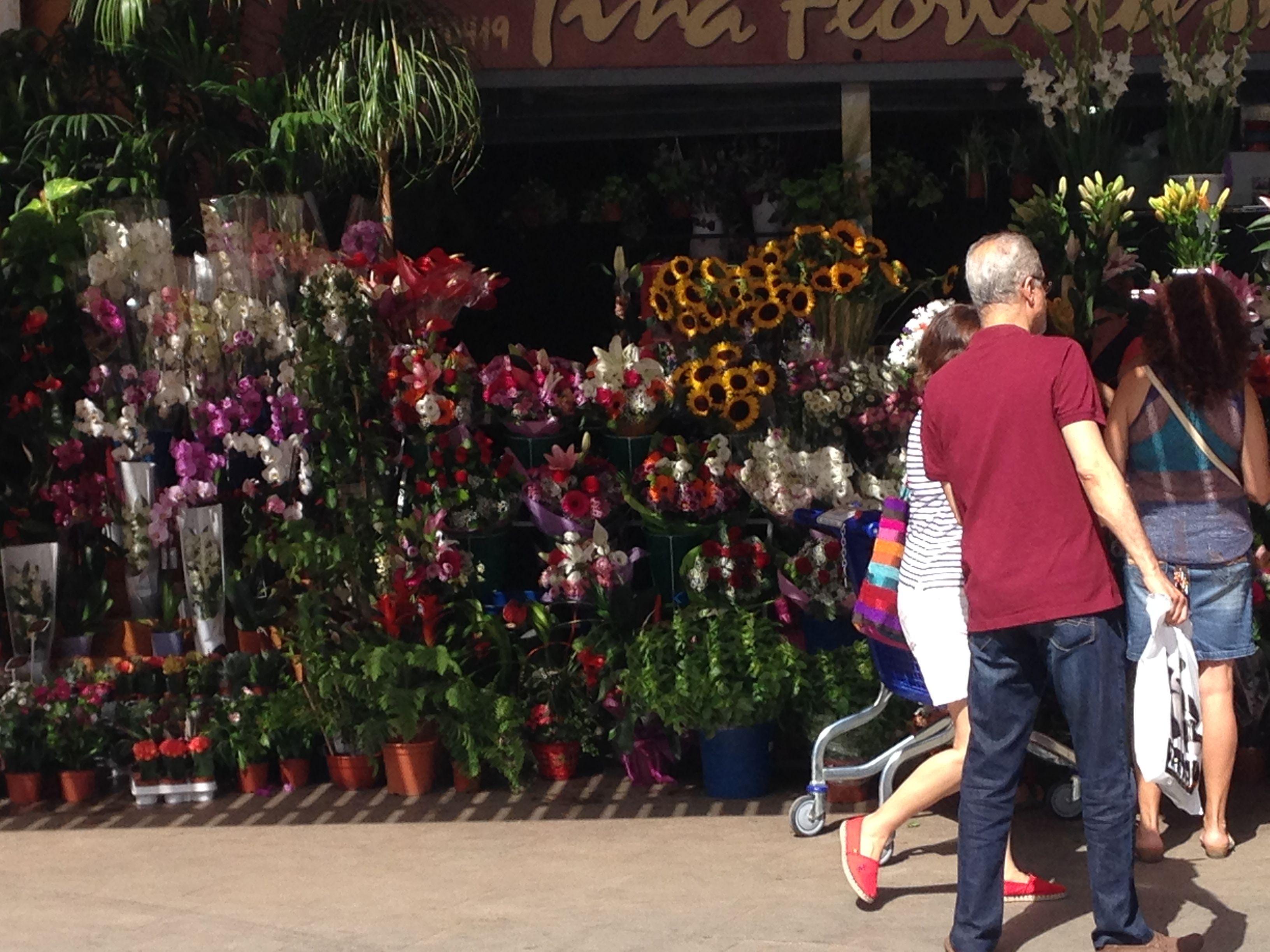 Esta Imagen Muestra Las Diferentes Flores Que Se Venden Detr S Del  ~ Mercadillos En Barcelona Y Alrededores