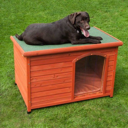Wooden Dog Kennel Flat Roof Outdoor Easy Assemble on OnBuy