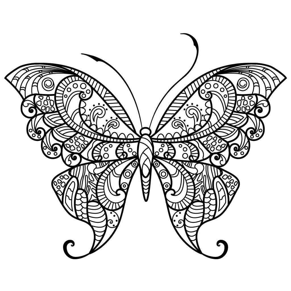Pin On Butterflies Coloring Pages For Adults