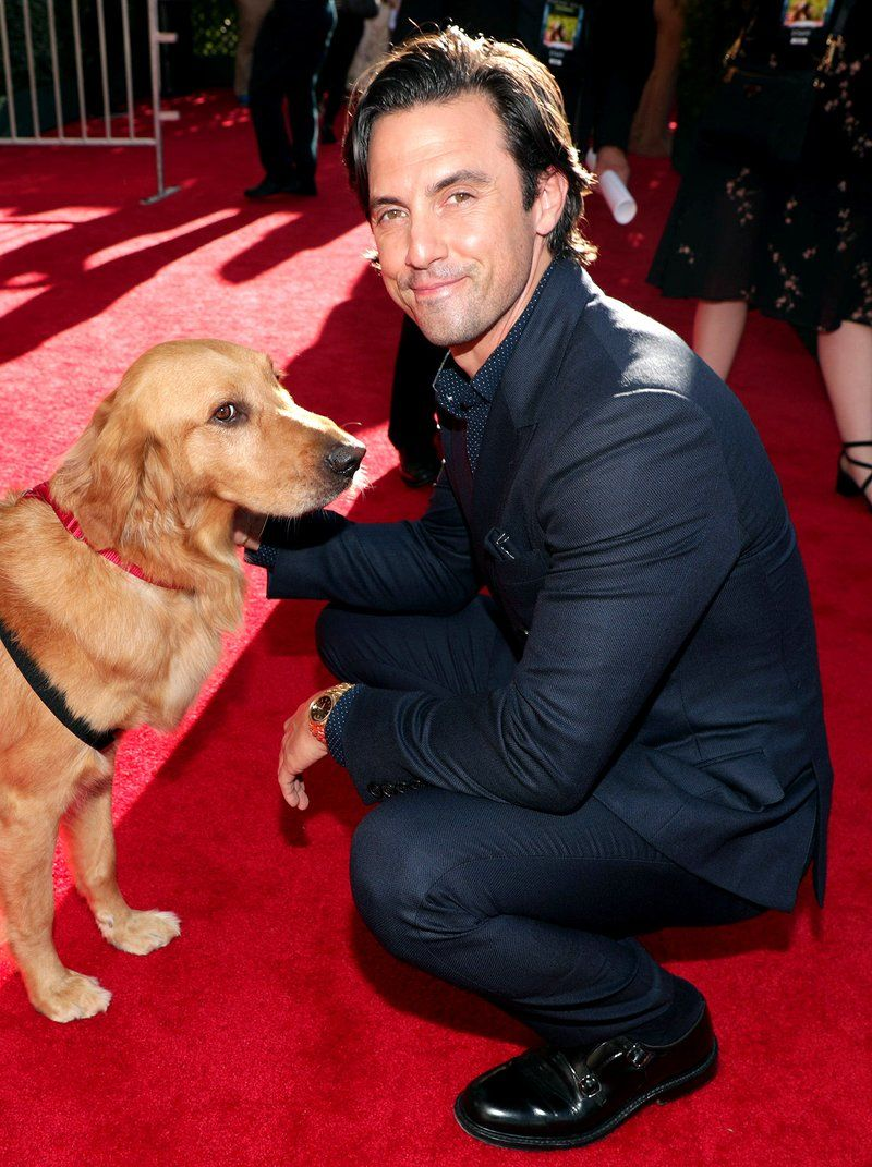 Why Milo Ventimiglia Loved Kissing His Costar in The Art