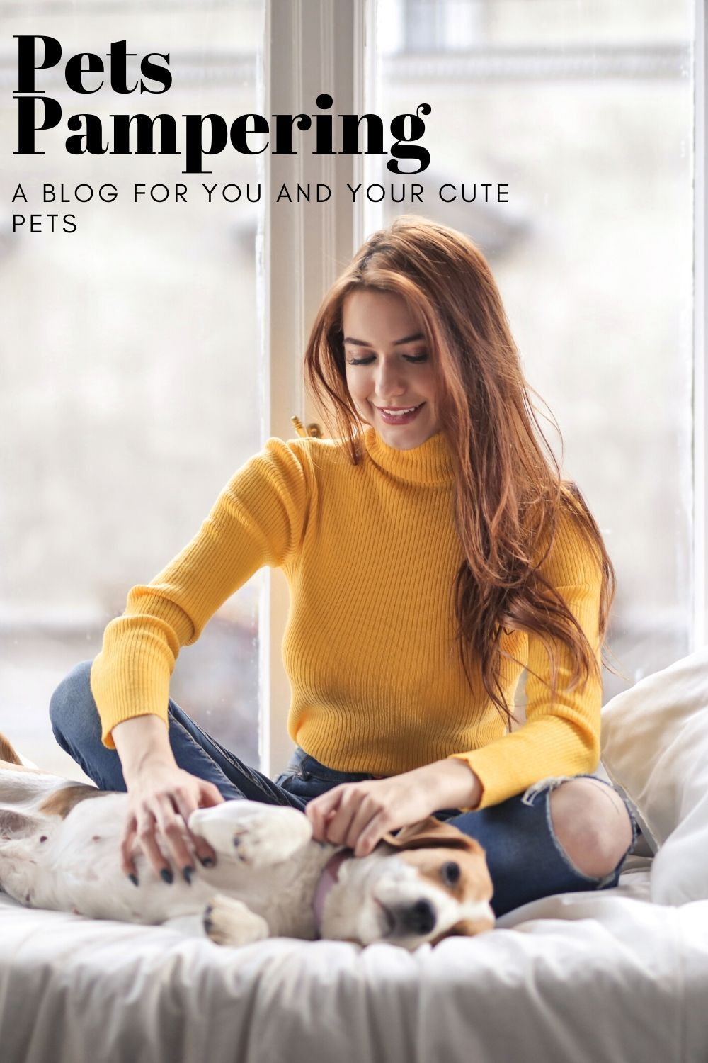 Pets Pampering- A Blog For You And Your Cute Pets #pets #petstagram #petsofinstagram #petsagram #petsofig #petshop #petscorner #petsgram #petsitting #petsmart #petsitter #petsofinsta #petsoninstagram #petsarefamily