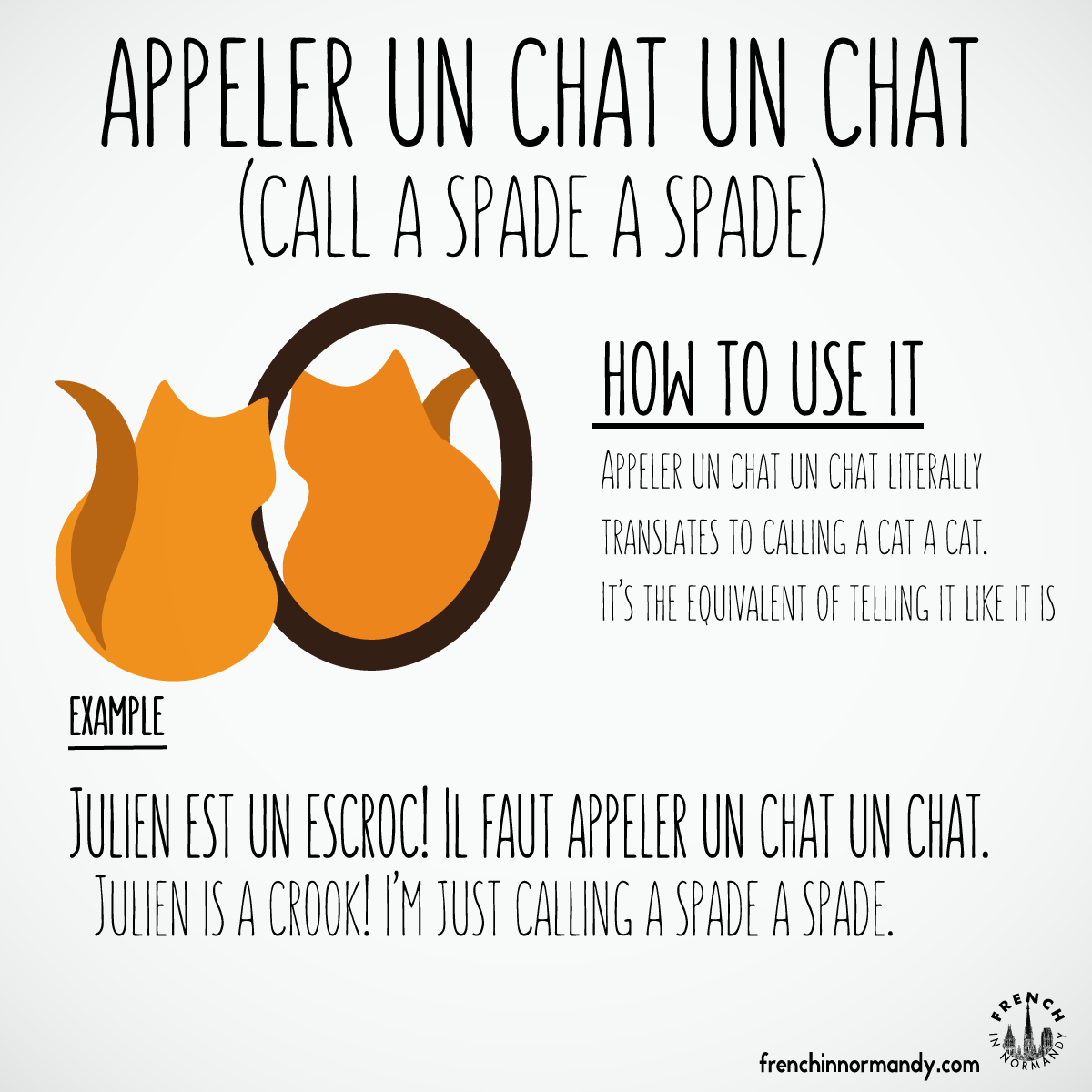 Do you know this French expression  Appeler un chat un chat ...  learnfrench 02e4b7a66db7
