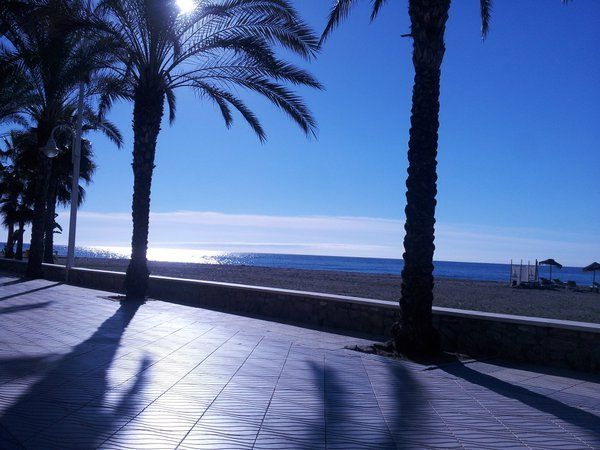 @CaroleBurrows1 - #ForAnyone who likes to relax visit Algorrobo costa @BrittanyFerries just turn left at Malaga x