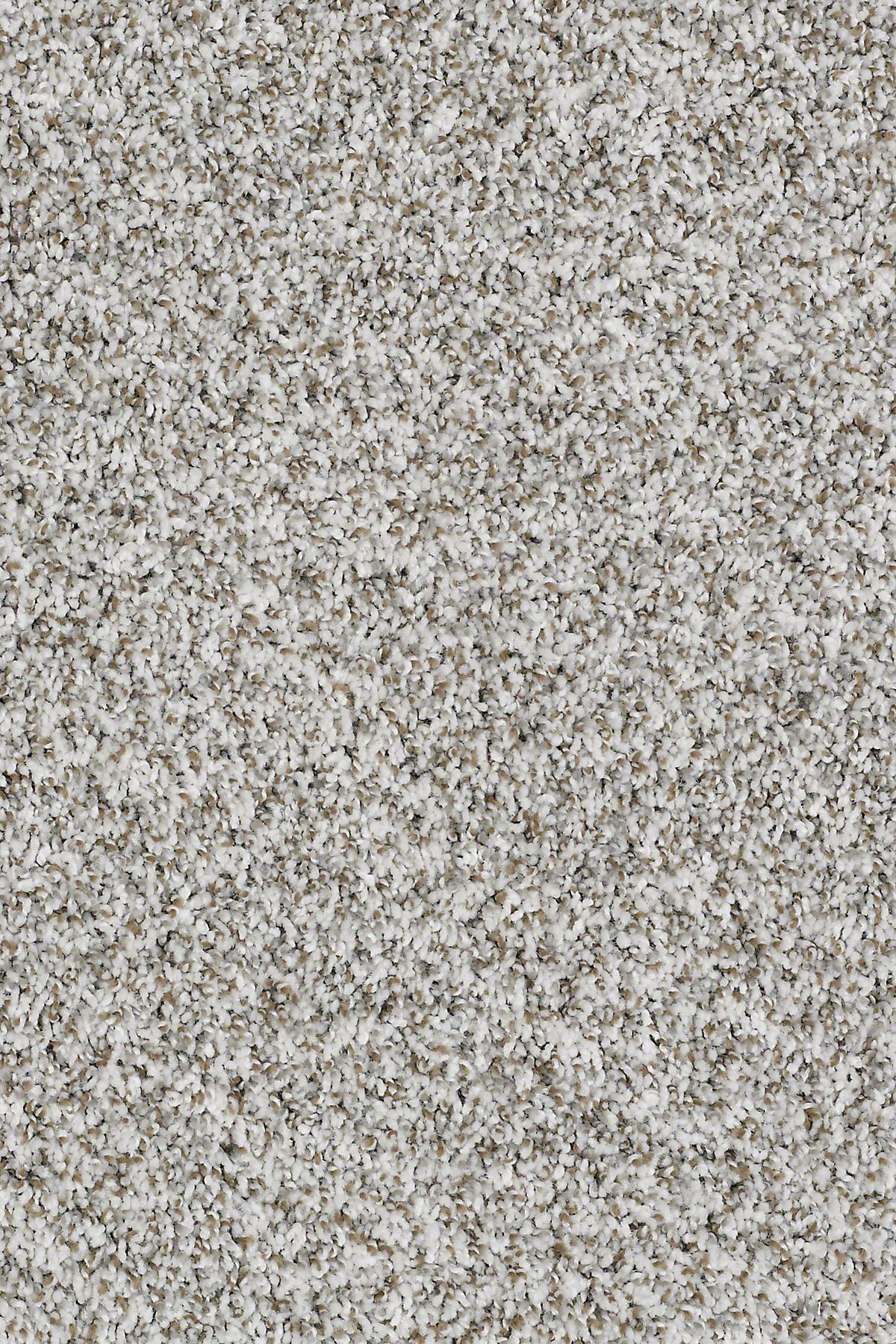 Inspire Me T E0693 Oatmeal Carpet Carpeting Berber Texture More In 2020 Shaw Carpet Bedroom Carpet Colors Carpet Samples