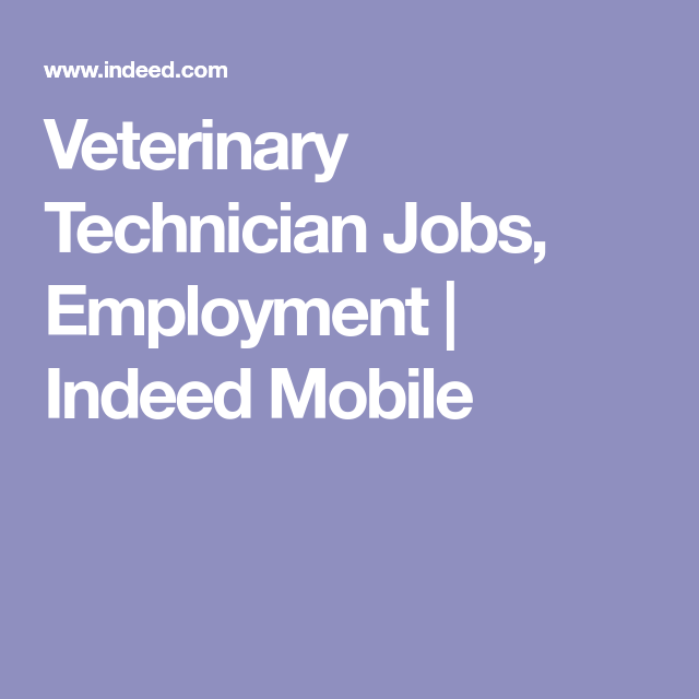 Veterinary Technician Jobs Employment  Indeed Mobile  My Future