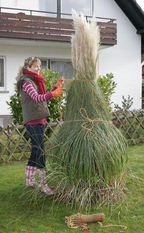 Vorgarten Moderne GestaltungVorgrten Bressler Gartenbau Amp - Vorgarten Moderne Gestaltung