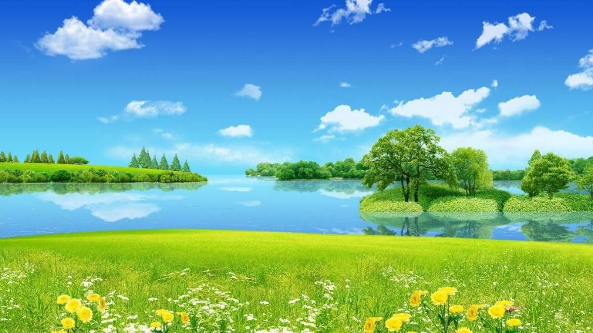 Nature Nature Wallpaper