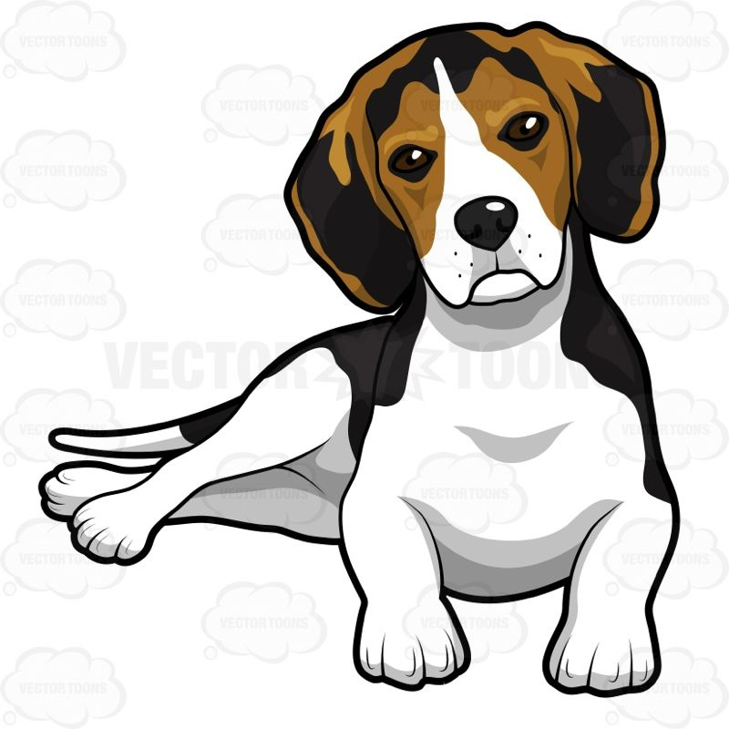 Cute Beagle Puppy Lying Down Beagle Art