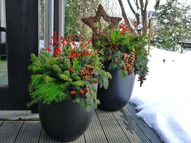 Wer sagt denn dass pflanzk bel und pflanztr ge nur in der - Naturliche adventsdekoration ...