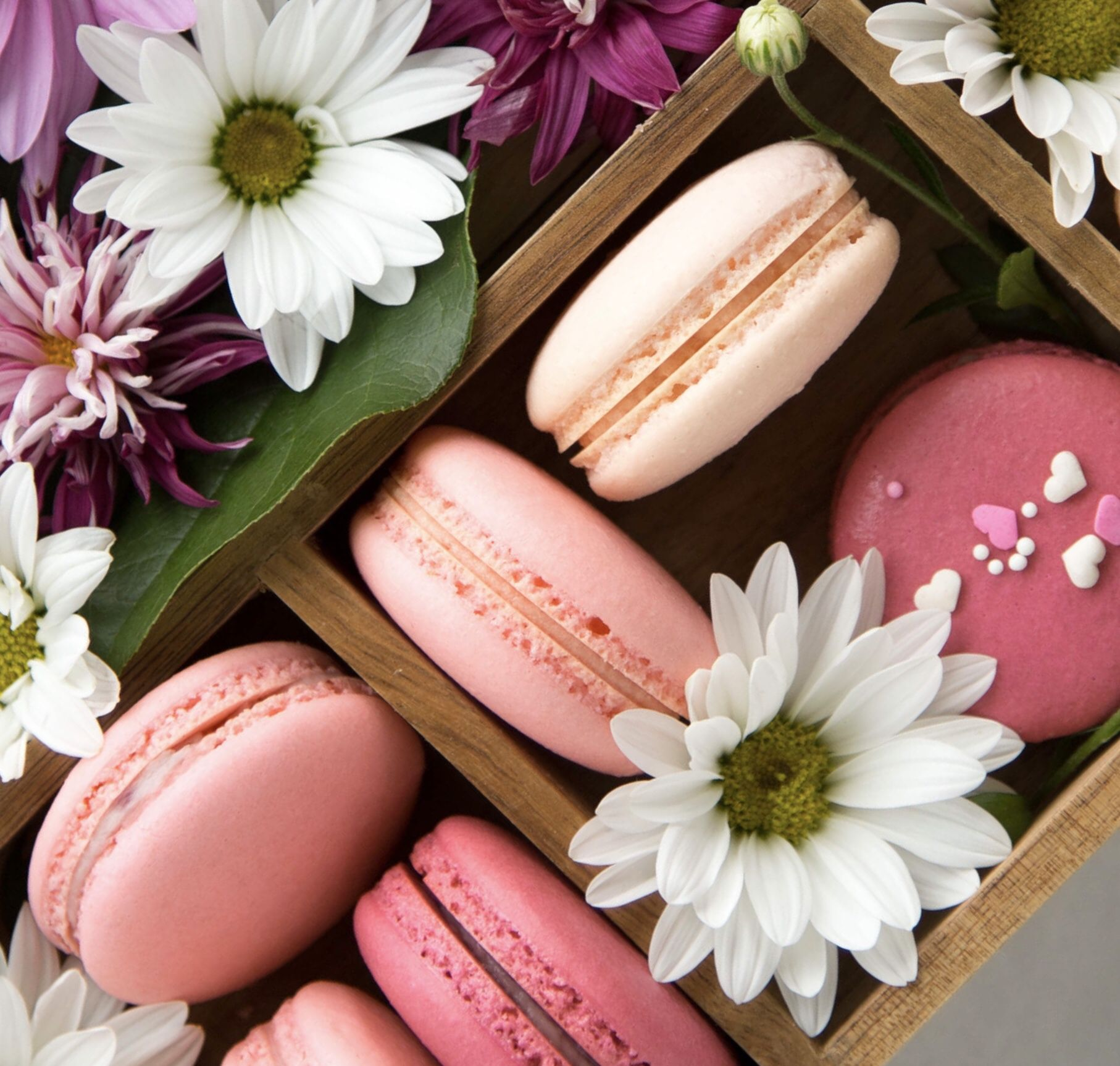 The best French Macaron recipe! #macarons #frenchmacarons ...
