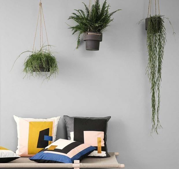 Wohnen mit Pflanzen | Zimmerpflanzen, Pflanzgefäße und Pflanzen