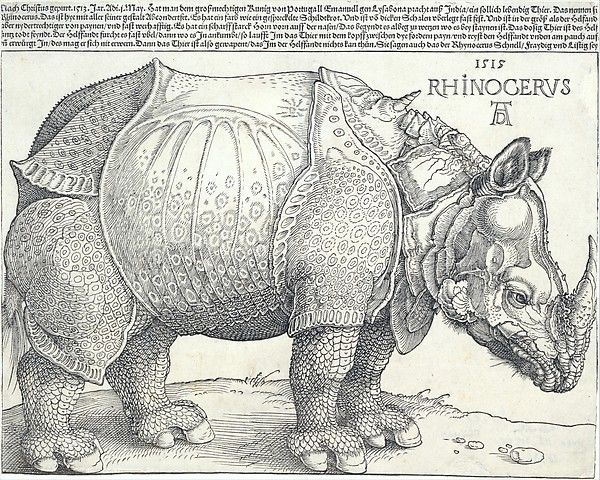 The Rhinoceros Albrecht Dürer (German, Nuremberg 1471–1528 Nuremberg) Date: 1515 Medium: Woodcut