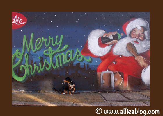 Why Santa S Sleigh Will Be Pulled By Entlebucher Mountain Dogs This Year A Christmas Tail With Images Entlebucher Mountain Dog Mountain Dogs Santa Sleigh