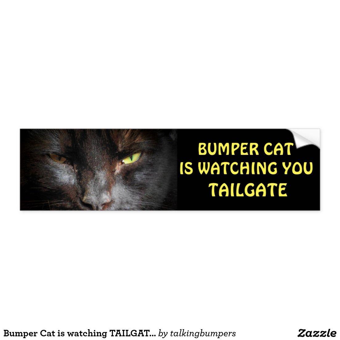 Bumper Cat Is Watching Tailgate 19 Bumper Sticker Zazzle Com Bumper Stickers Bad Drivers Bumpers [ 1104 x 1104 Pixel ]