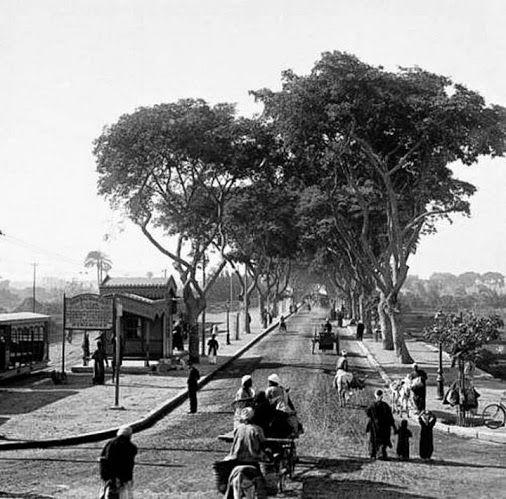 صورة جميلة لمدخل شارع الهرم و محطة ترام الجيزة عام 1910 تقريبا Old Egypt Cairo Egypt Egypt