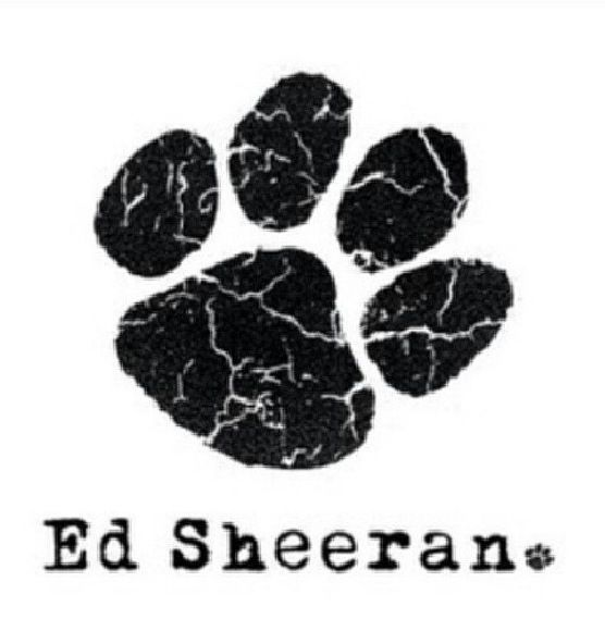 The Paw Print Paw Prints Ed Sheeran Ed Sheeran Tattoo Ed