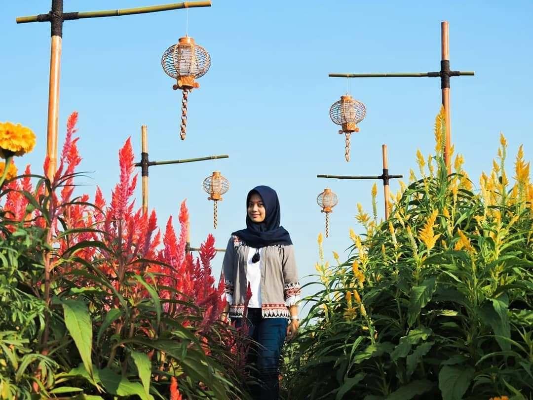 Alamat dan Harga Tiket Masuk Resoinangun Garden Bantul