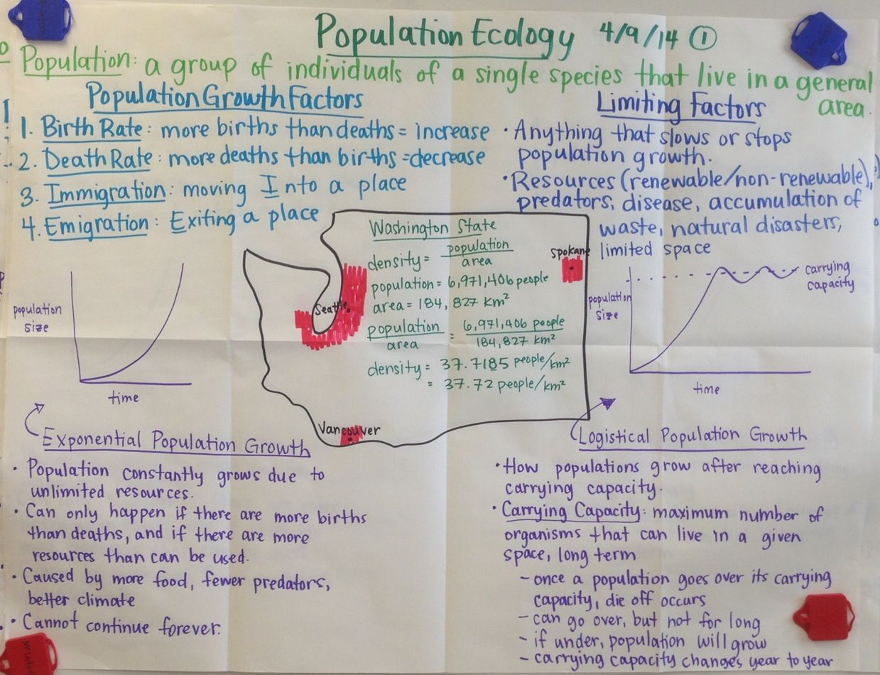 Population Ecology Biology Glad Anchor Chart