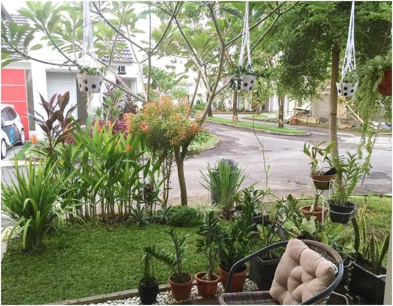 Taman Depan Rumah Minimalis Sederhana Modern Lahan Sempit Pinggir Jalan Terbaru Desain Taman Rumah Minimalis Rumah Hijau