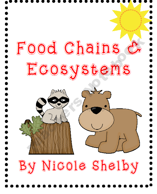 Food Chains, Food Webs, and Ecosystems Science Activities