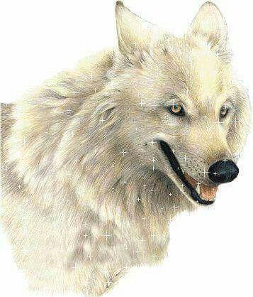 Wolfsparkle
