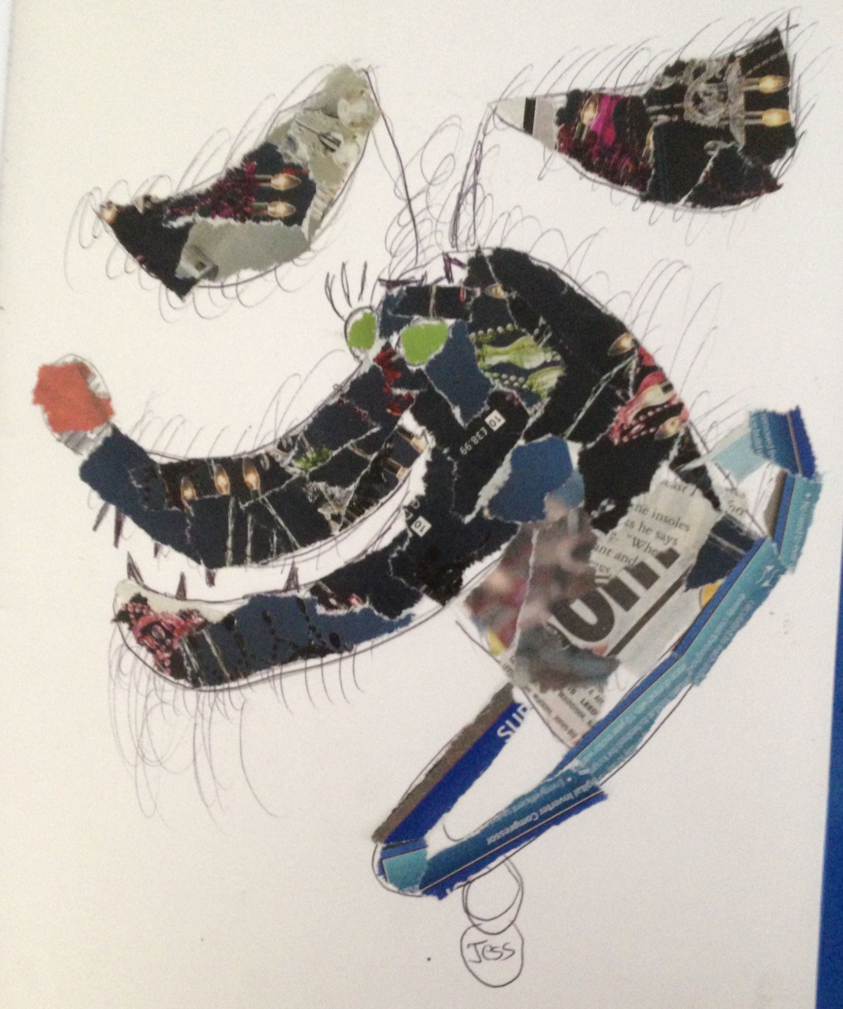 Sam,  collage of an animal showing pattern and texture. St Mary's Catholic High School