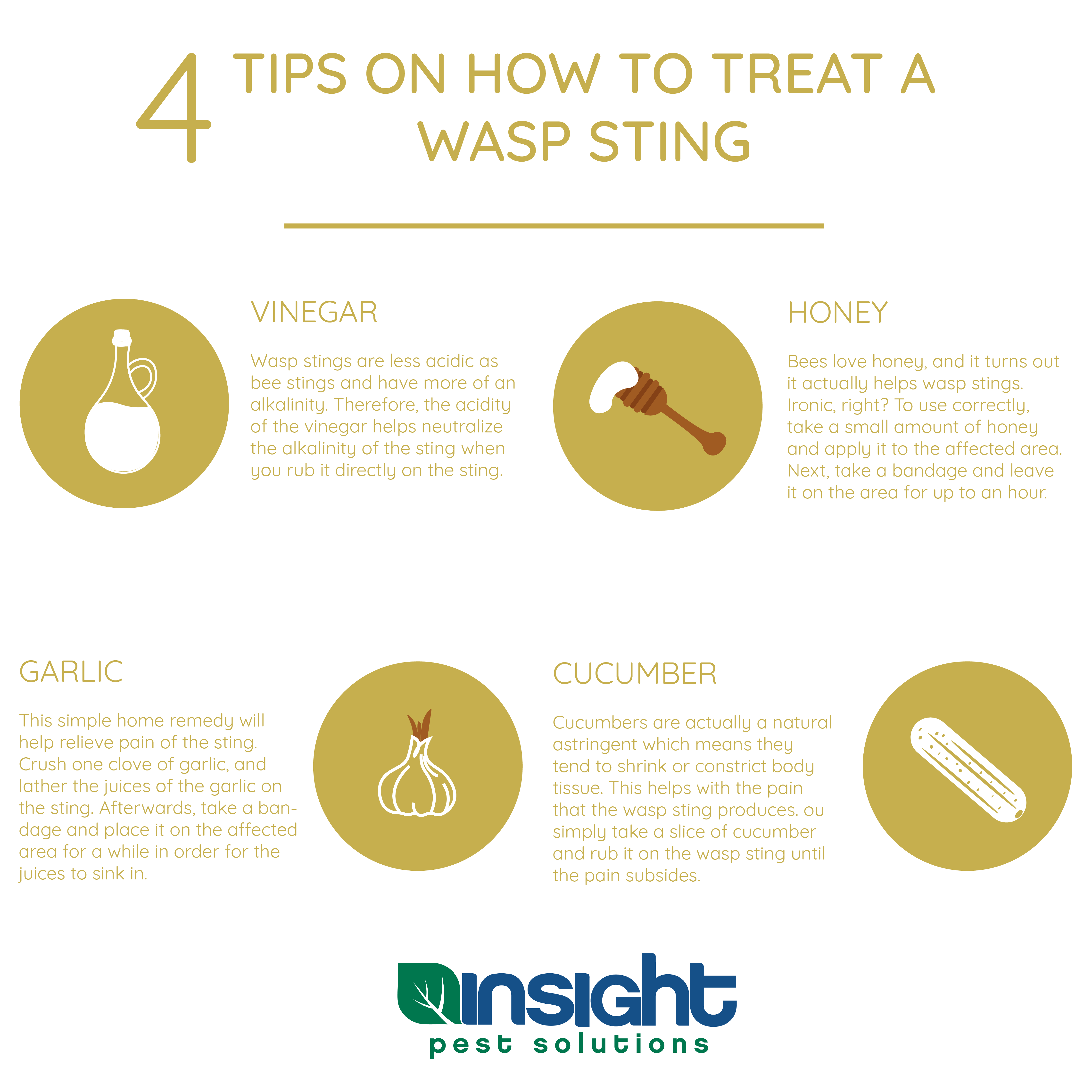 How To Treat A Wasp Sting Wasp Stings Pest Solutions Sting