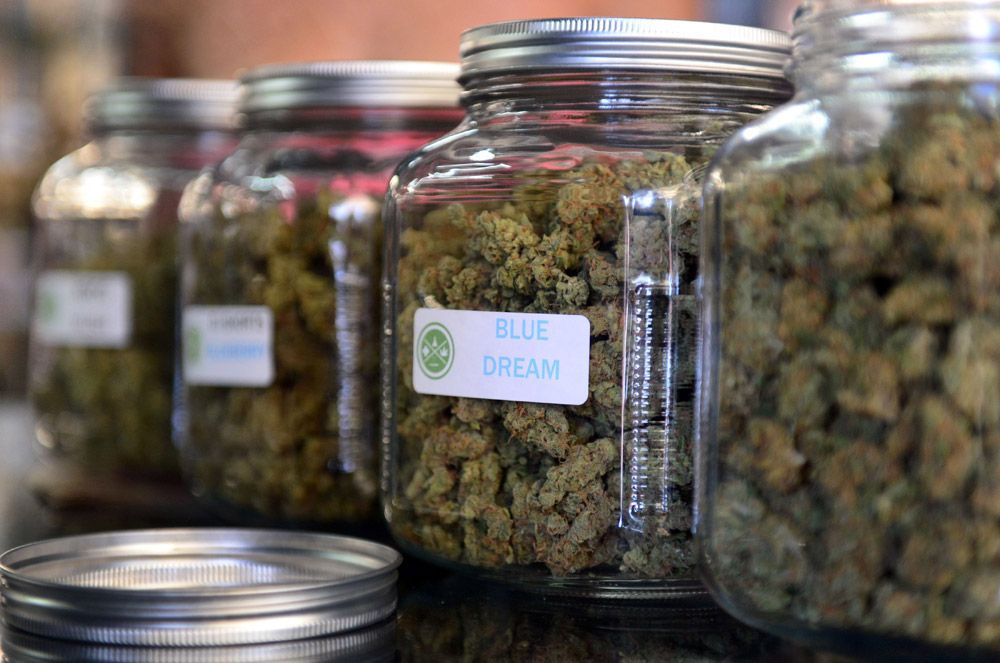 Four strains of 'skinny pot' that WON'T bring on the