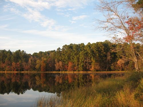 Daingerfield State Park In Daingerfield Tx We Have Made A Lot Of