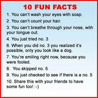 <b>Funny</b> Pictures - Fact | A Collection of <b>Clean Jokes</b>/Humor | Humor ...