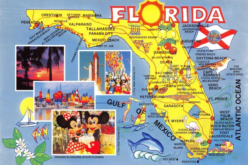Us Lat Long Map%0A Postcard Map Florida   USA United States  F