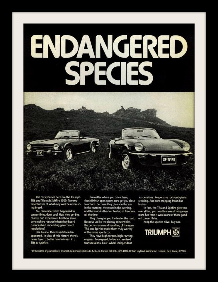 1975 TRIUMPH TR6 /& SPITFIRE 1500 Car Vintage Look Metal Sign  ENDANGERED SPECIES