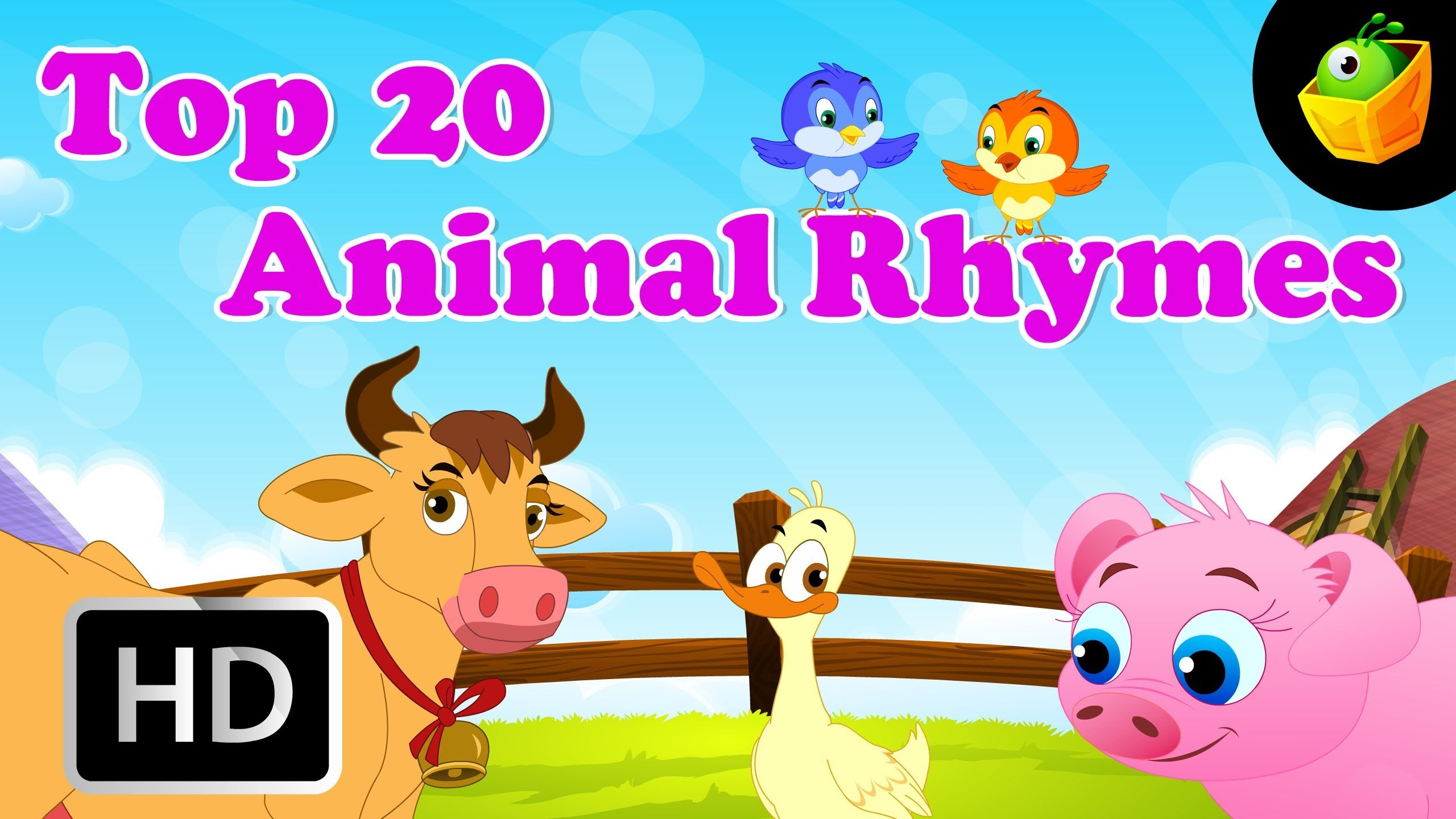 Top 20 Animal Compiled English Rhymes Combination of