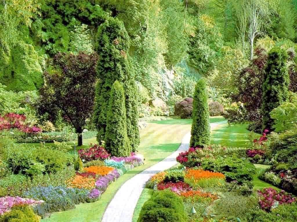 The Most Beautiful Rose Garden In The World   Ideas For Your Most . Part 90