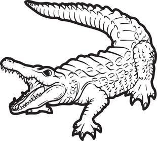 alligator coloring page 2 alligators tattoo and animal tattoos rh pinterest com Bird Clip Art Black and White Lizard Clip Art Black and White